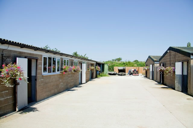 Tawnyhill Boarding Kennels - Kennel blocks on sunny day
